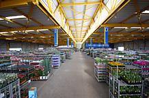 市場棟は、リスク無縁の360度フラット構造。