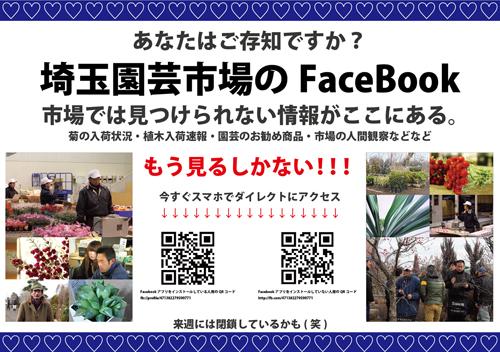 Saien FaceBook commercial